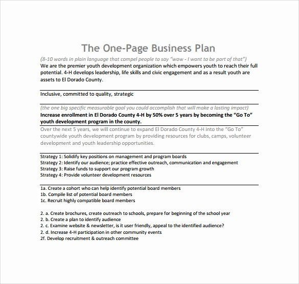 1 Page Business Plan Template 1 Page Business Plan Template Beautiful 10 E Page Business