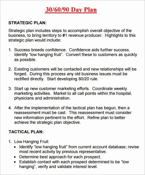 30 Day Business Plan Template 30 Day Action Plan Template New 14 Sample 30 60 90 Day Plan