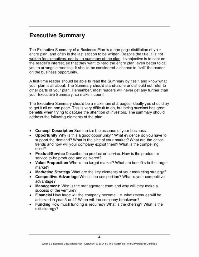 5 Page Business Plan Template Executive Summary Sample for Proposal Beautiful How to Write