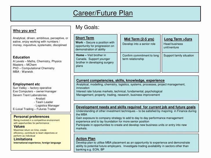 5 Year Plan Template Career Development Plan Template New Best 25 Personal