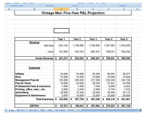 5 Year Plan Template Excel Five Year Plan Template Five Year Business Plan Template