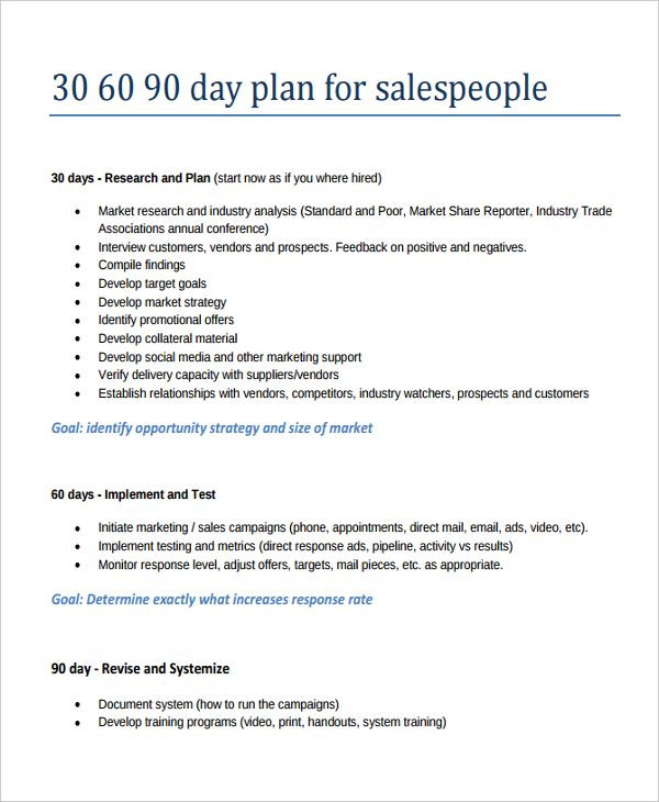 90 Day Business Plan Template 30 60 90 Day Sales Plan Template