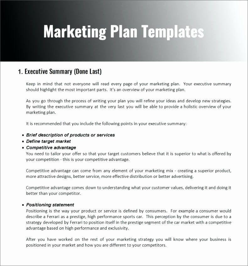Apartment Marketing Plan Template Nonprofit Marketing Plan Template Awesome Non Profit