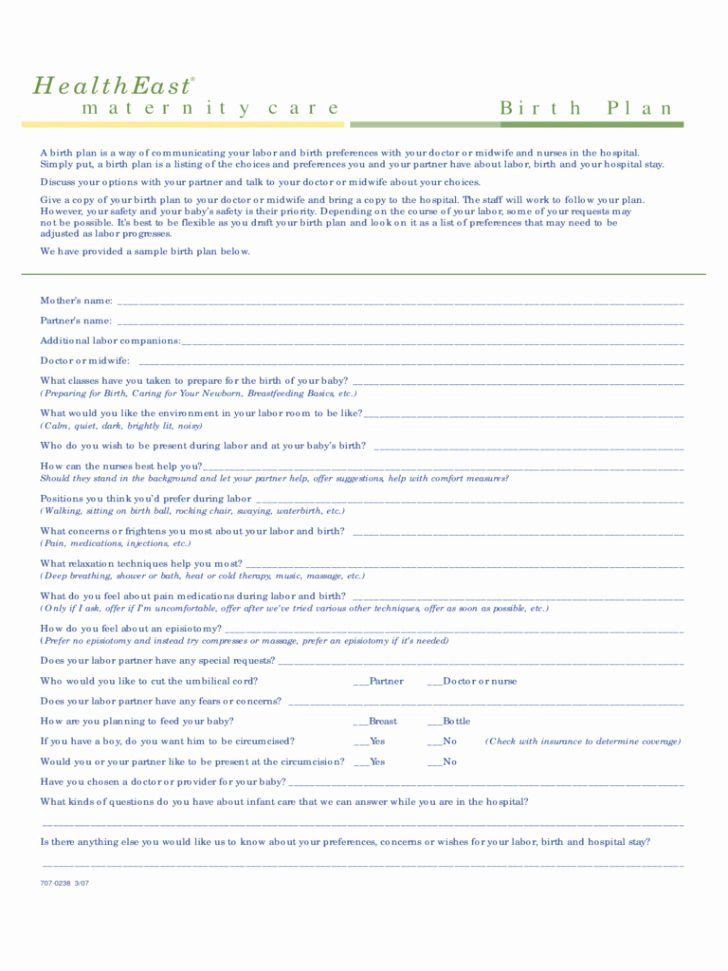 Birth Plan Template Word Document Birth Plan Template Word Doc Awesome Template Birth Plan