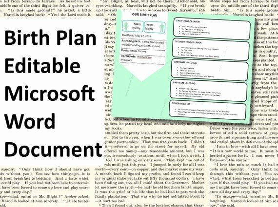 Birth Plan Template Word Document Visual Birth Plan Template Elegant Printable Birth Plan