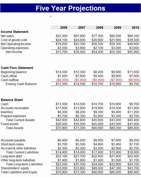 Business Plan Budget Template 5 Year Financial Plan Template Awesome 5 Year Business