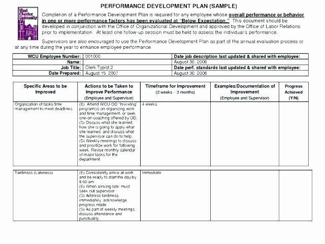 Business Process Improvement Plan Template Capital Improvement Plan Template Beautiful Sample Process