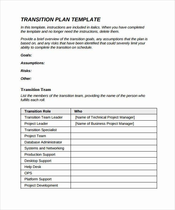 Business Transition Plan Template Executive Transition Plan Template Lovely Transition Plan