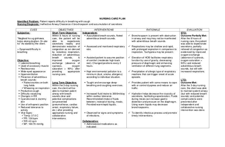 Copd Care Plan Template Image Result for Copd Concept Maps