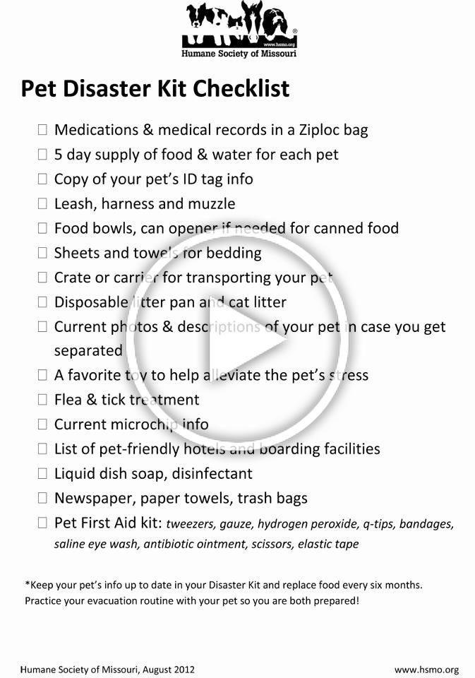 Daycare Emergency Preparedness Plan Template Daycare Emergency Preparedness Plan Template Unique 25 Best