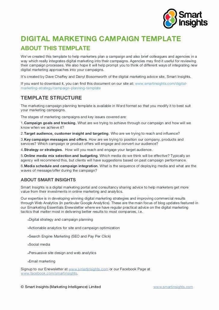 Email Marketing Campaign Plan Template Political Campaign Plan Template Pdf New Marketing Campaign