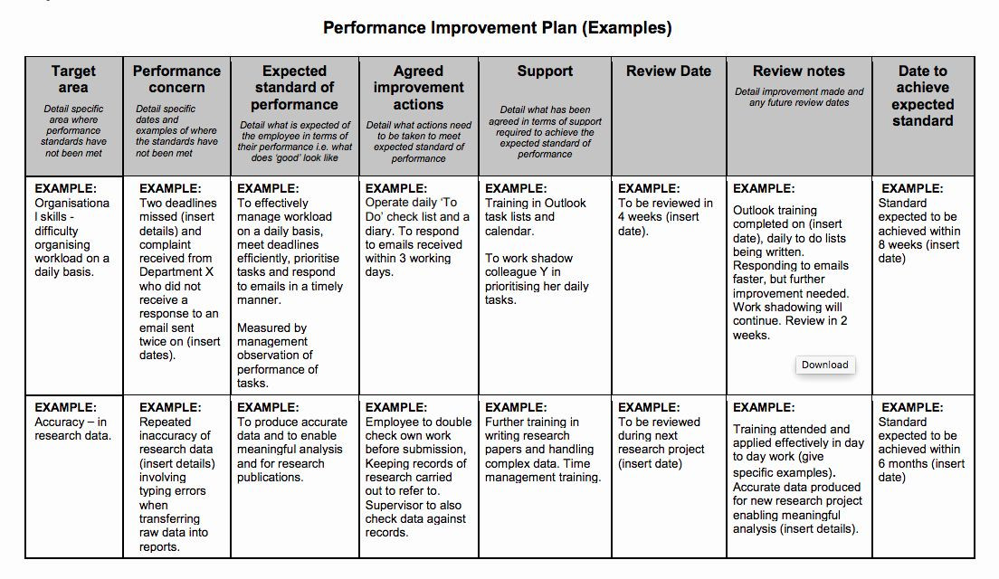 Employee Improvement Plan Template Employee Improvement Plan Template New Examples Performance