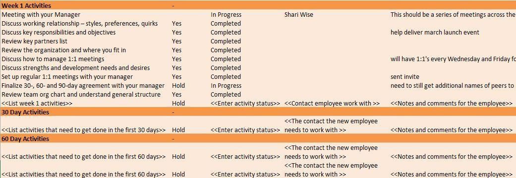 Employee Training Plan Template Word Employee Training Plan Template