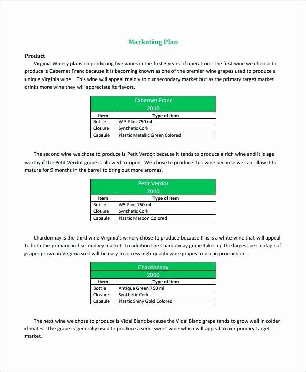 Film Business Plan Template Business Plan Template Beautiful Production House