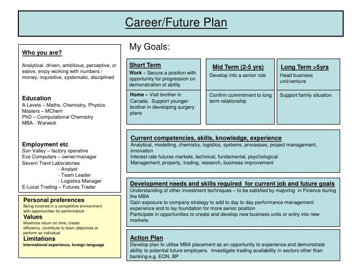 Five Year Career Plan Template Career Plan Example