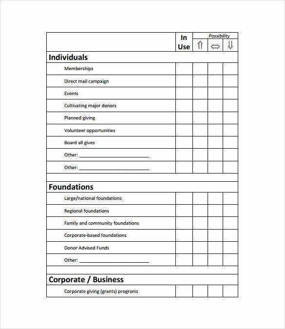 Fundraising Plan Template Excel Fundraising Development Plan Template Beautiful 11