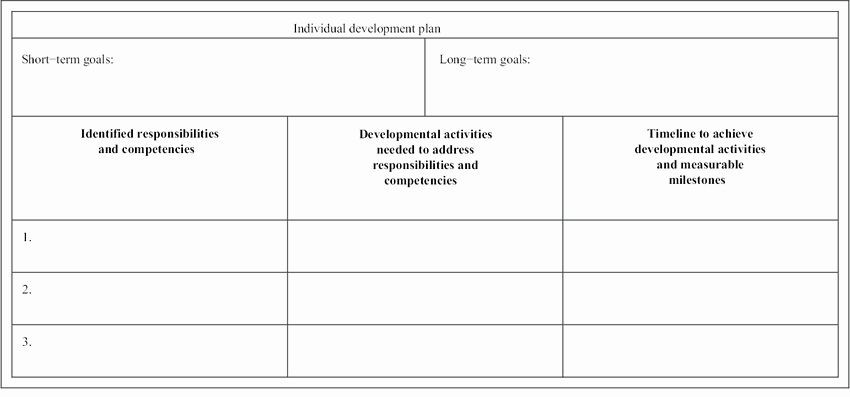 Individual Development Plan Template Excel Individual Development Plan Examples Lovely Sample An