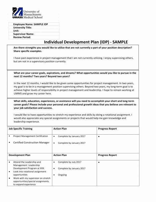 Individual Development Plan Template Individual Development Plan Template Fresh Free 10 Personal