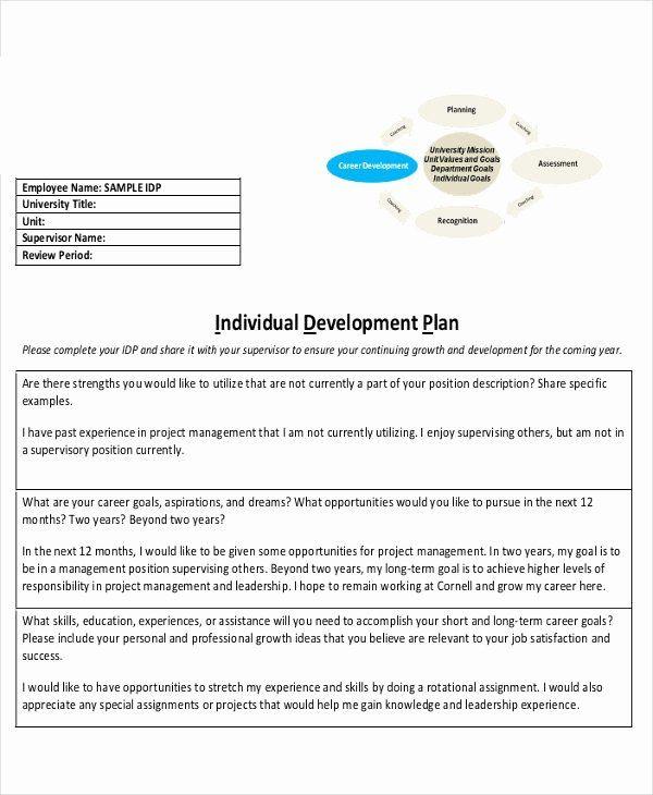 Individual Development Plan Template Individual Professional Development Plan Sample
