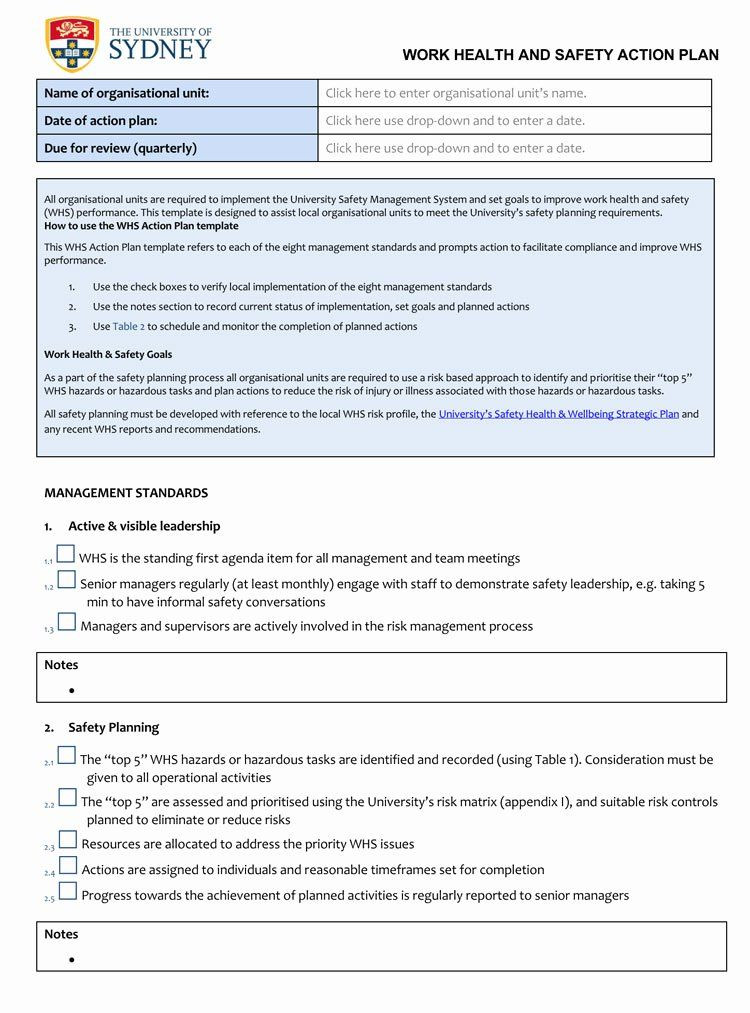 Individual Student Action Plan Template Action Plan Example for Students Beautiful 58 Free Action