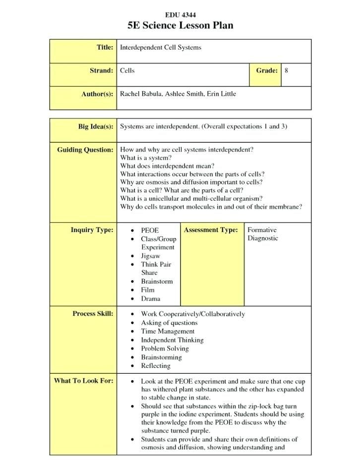 Lesson Plans for Elementary Template Reggio Emilia Lesson Plan Example E Learning Lesson Plan