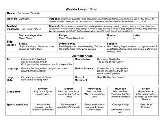 Lesson Plans Template for Preschool Naeyc Lesson Plan Template for Preschool