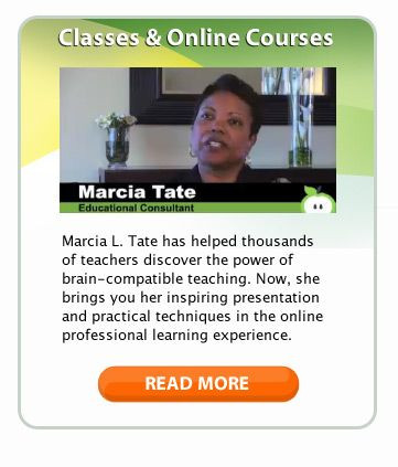 Marcia Tate Lesson Plan Template Developing Minds