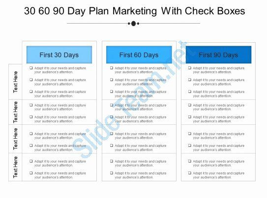 New Principal Entry Plan Template Principal Entry Plan Template Beautiful 11 30 60 90 Day Plan