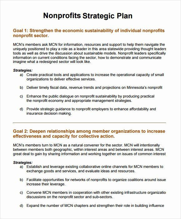 Non Profit Strategic Plan Template Strategic Plan for Nonprofits Template Elegant 11 Non Profit
