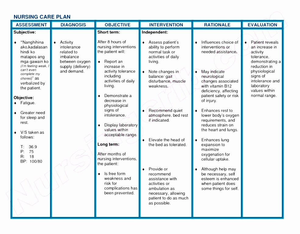 Nursing Care Plan Template Pdf Nursing Care Plan Template Best Blank Nursing Care Plan