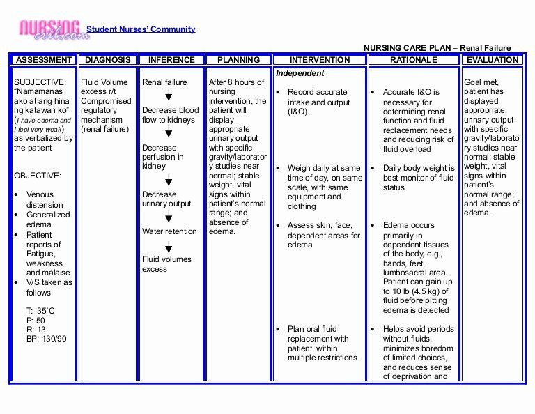 Nursing Care Plan Template Pdf Nursing Teaching Plan Unique Nursing Crib Nursing Care Plan