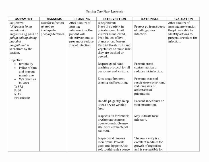 Nursing Care Plan Template Pdf Pin On Example Plans Template