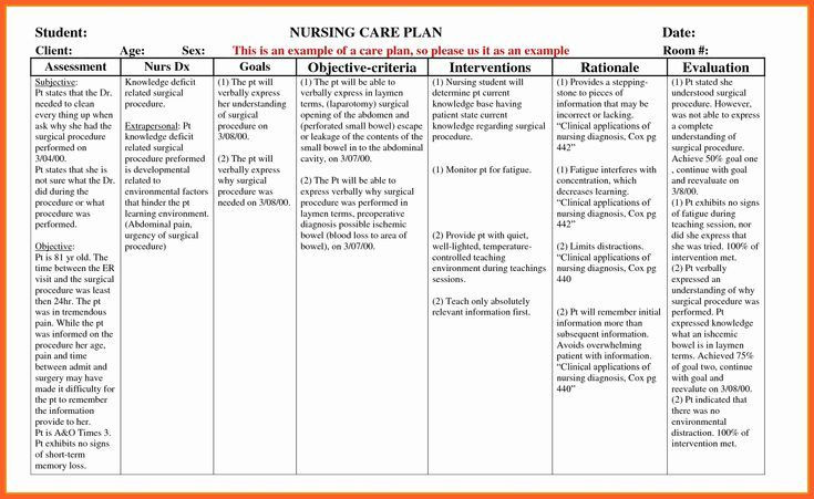 Nursing Care Plans Template Example Care Plan Template for Elderly Nursing Home