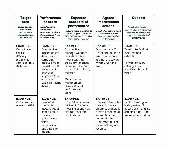Performance Improvement Plan Template Excel Performance Improvement Plan Template Excel Lovely