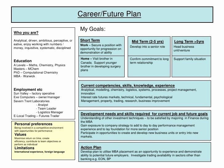 Personal 5 Year Plan Template Five Year Plan Template Beautiful Personal Five Year Plan