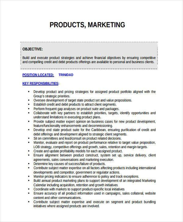 Personal Marketing Plan Template Personal Marketing Plan Example 42 Marketing Plan Examples