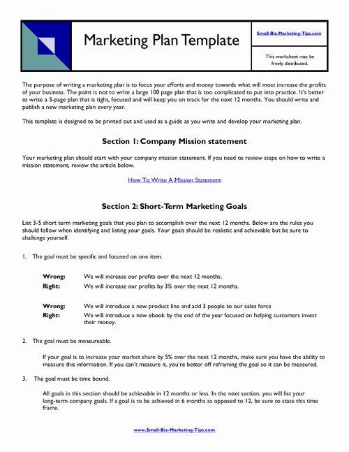 Personal Marketing Plan Template Personal Marketing Plan Template Lovely why Situation