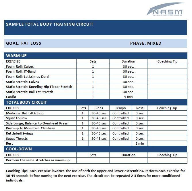 Personal Trainer Workout Plan Template 13 Best Nasm Workout Examples Images On Pinterest Work