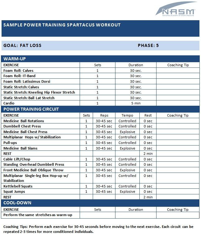 Personal Trainer Workout Plan Template Sample Power Training Spartacus Workout