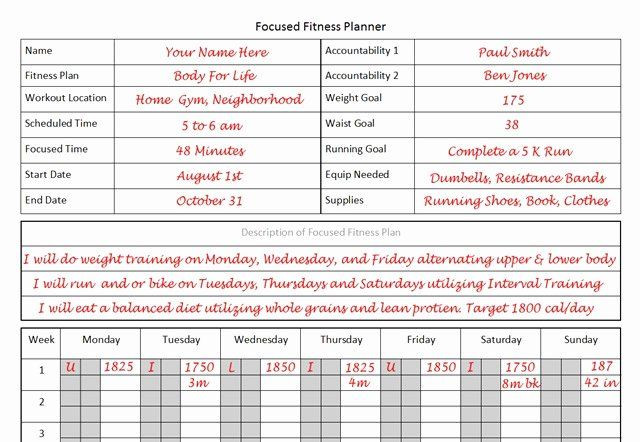 Personal Wellness Plan Template Personal Fitness Plan Template Elegant Fitness Planner the