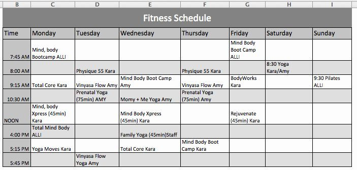 Personal Wellness Plan Template Personal Fitness Plan Template New Fitness Schedule Template