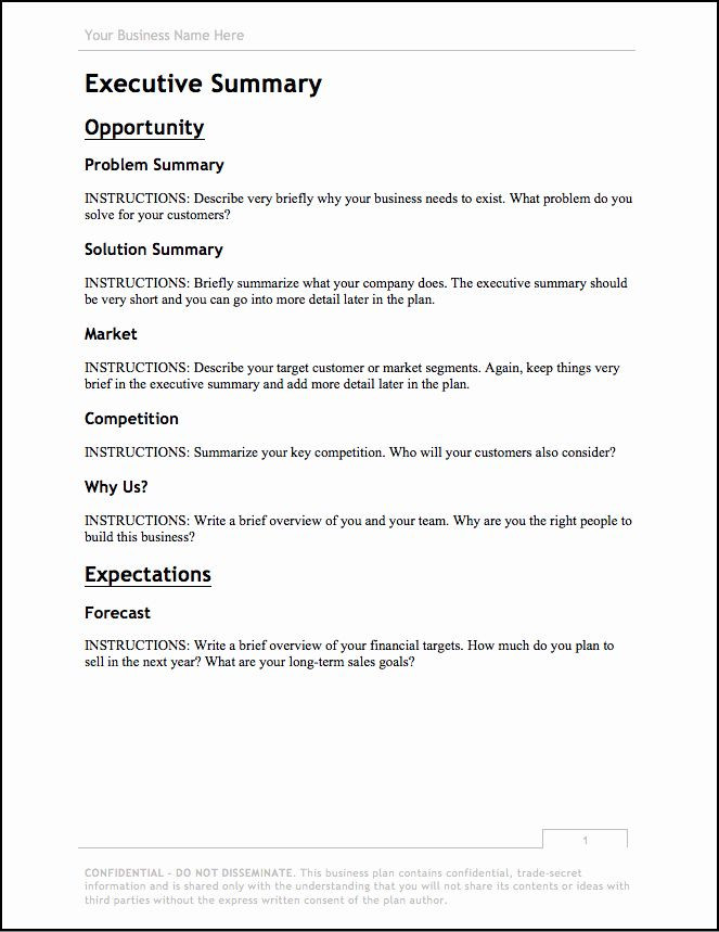 Photography Business Plan Template Graphy Business Plan Template Best Business Plan