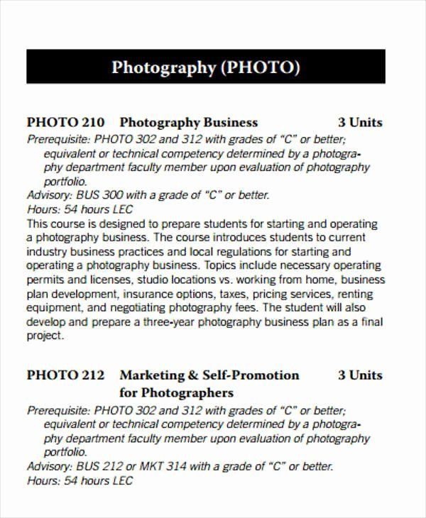 Photography Business Plan Template Graphy Business Plan Template Elegant 29 Free Business