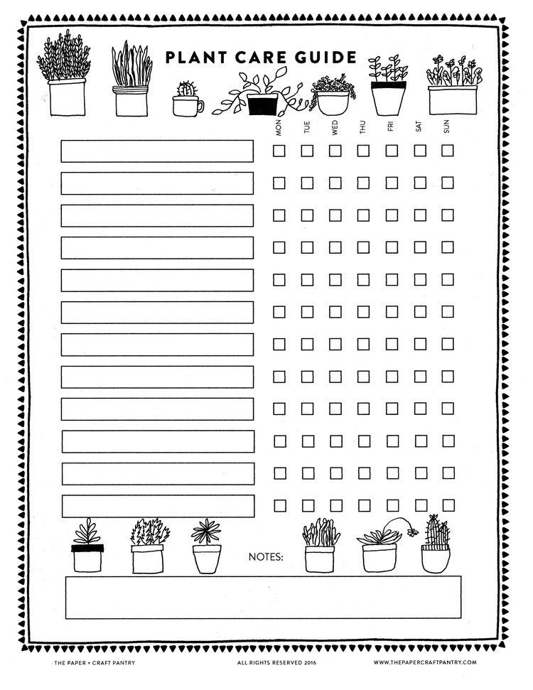 Plant Feeding Schedule Template Download Our Printable Plant Care Guide Watering Schedule