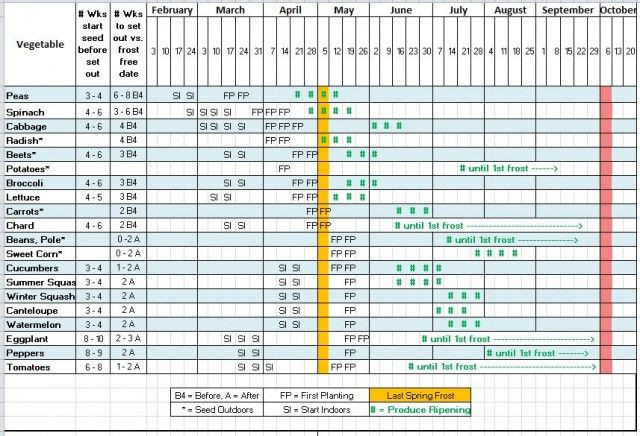 Plant Feeding Schedule Template Making 2013 S Seed Starting & Planting Schedule W