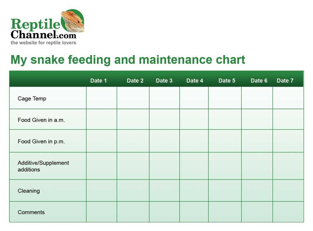 Plant Feeding Schedule Template Print Out This Free Snake Feeding and Maintenance Chart to