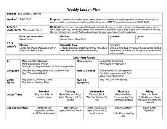 Pre Kindergarten Lesson Plan Template Naeyc Lesson Plan Template for Preschool