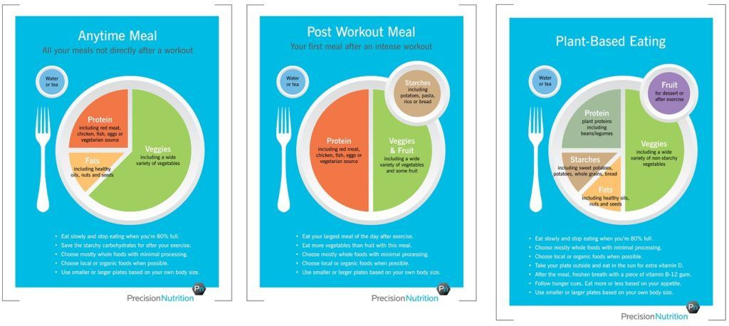 Precision Nutrition Meal Plan Template Photo Credit Precision Nutrition