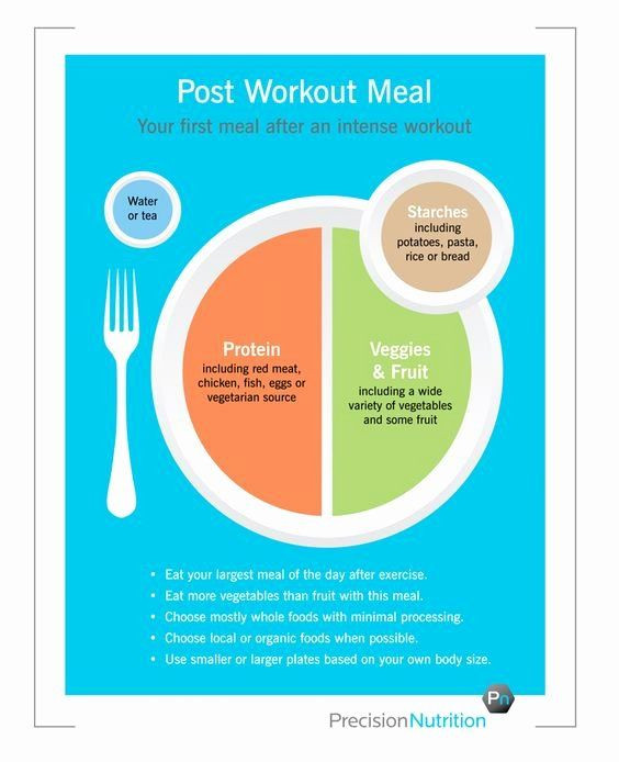 Precision Nutrition Meal Plan Template Precision Nutrition Meal Plan Template New Precision
