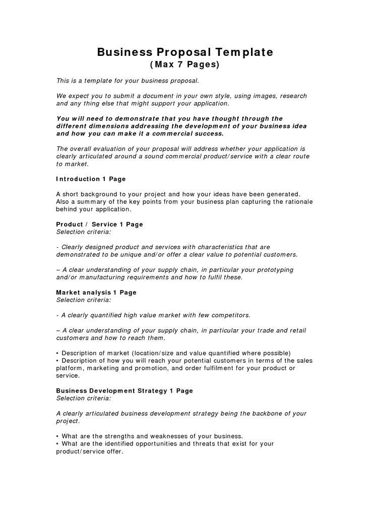 Record Label Business Plan Template Pany Business Proposal